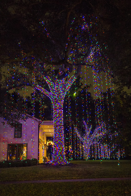 Christmas lights_21