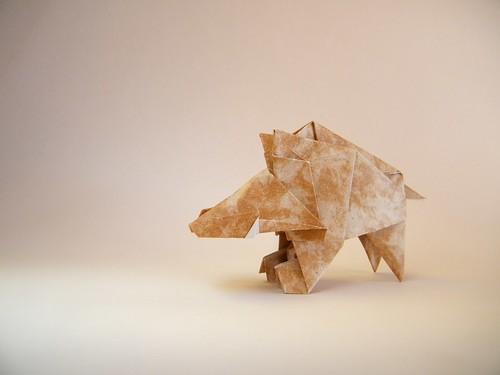 Wild boar - Katsuhisa Yamada