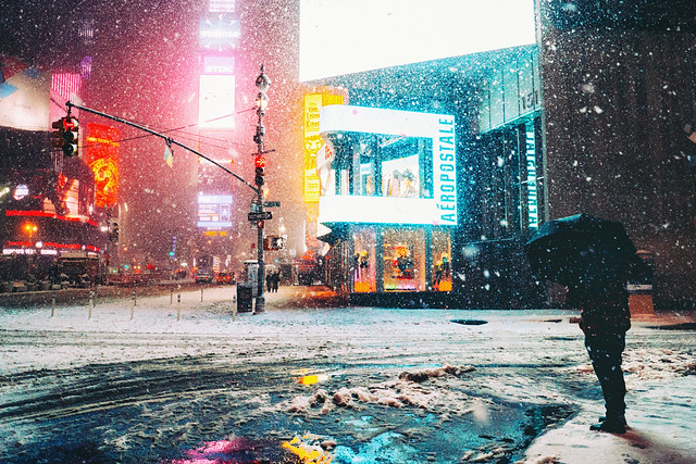 NY Times - Vivienne Gucwa - New York in the Snow Book