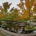 DSC05753 Panorama