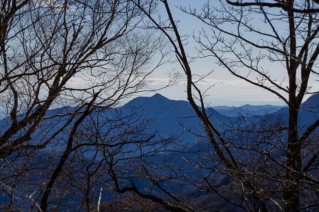 良く目立つ大岳山