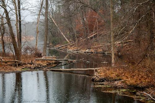 smack53 autumn autumnseason fall fallseason river ramaporiver sloatsburg newyork water reflections stream nikon d300 nikond300 scenic scenery