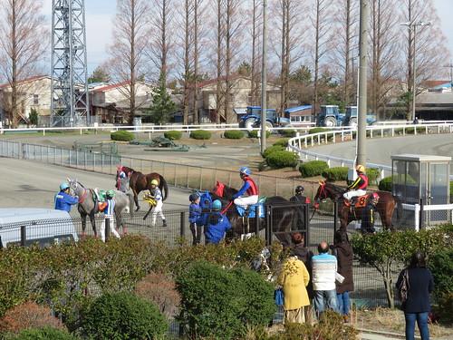 金沢競馬場の金網に集まるファン