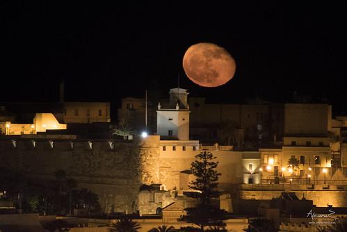 Luna de Noviembre