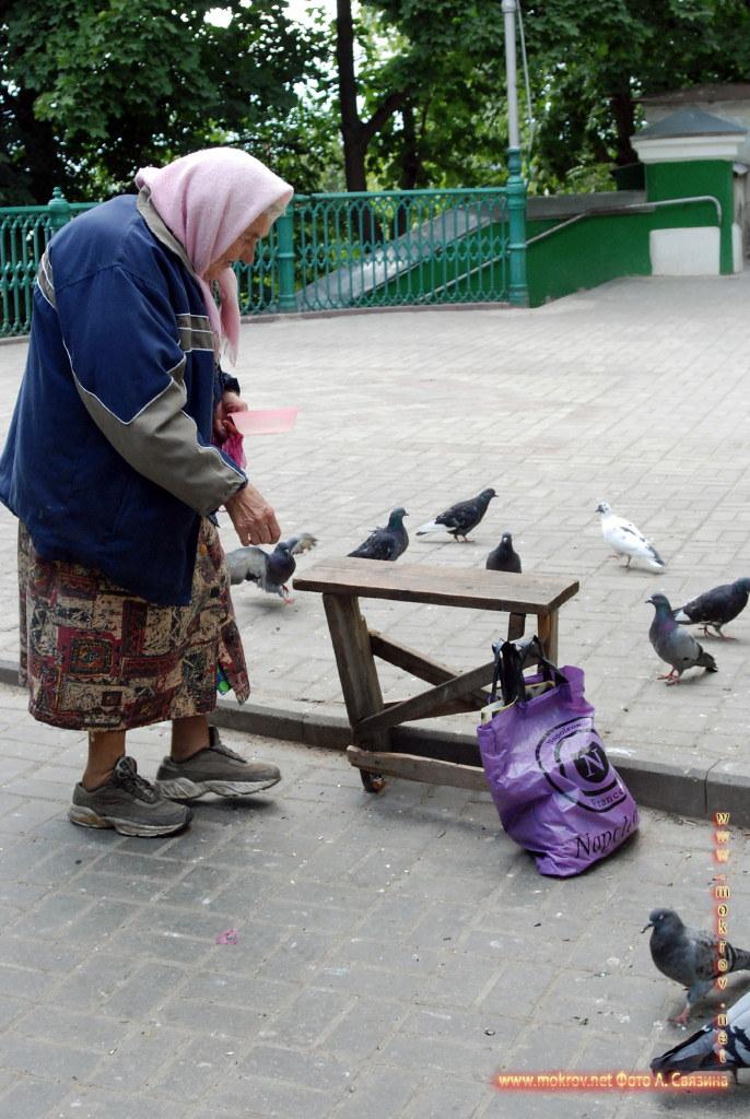 Город Смоленск с фотоапаратом прогулки туристов