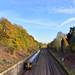 Autumn Colour Rail