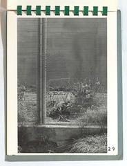 HM Prison Maze Escape Attempt 1974