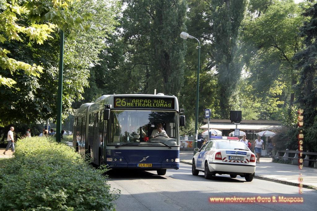 с фотокамерой прогулки туристов Столица Венгрии - Будапешт,