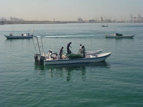 Fishermen working at Sha'am