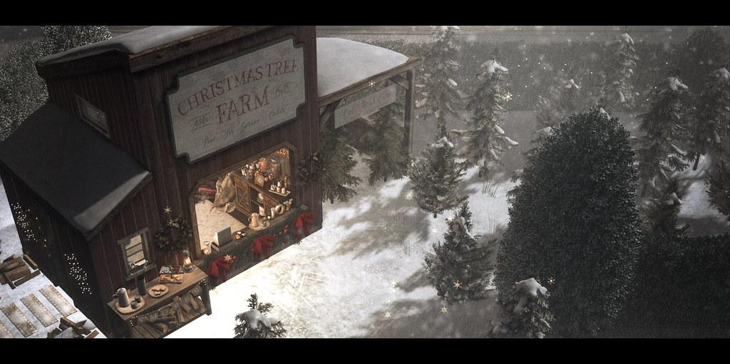 The Christmas Tree Farm.