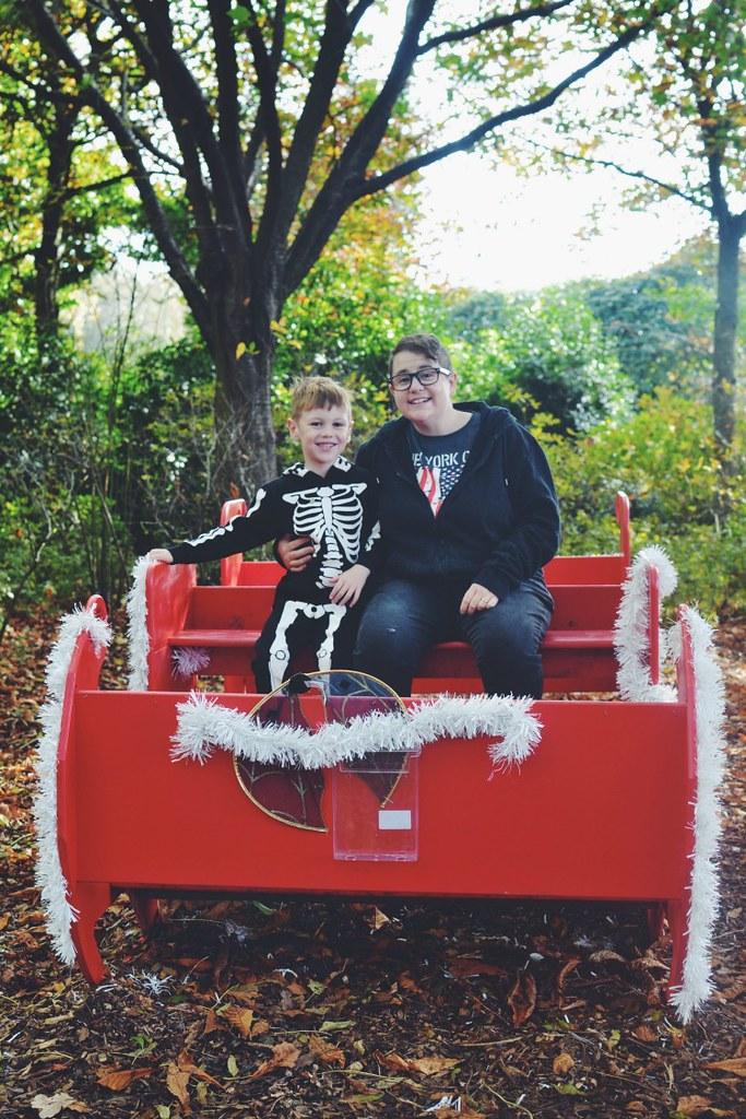 Halloween M sleigh