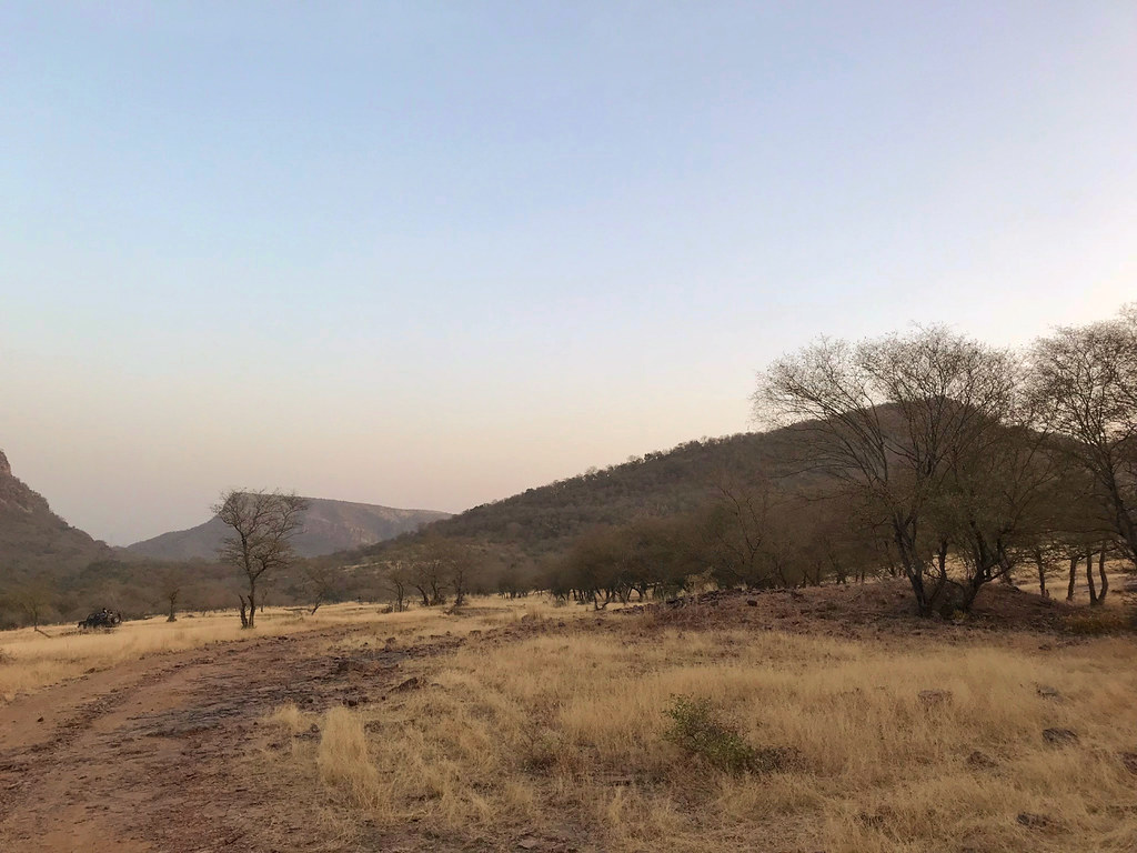 088-India-Ranthambore