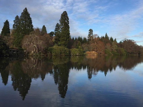 Beautiful afternoon reflections at Sheffield Park