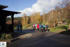 2017-11-19 11-19-31 Col du Litschhof - Wingen.jpg