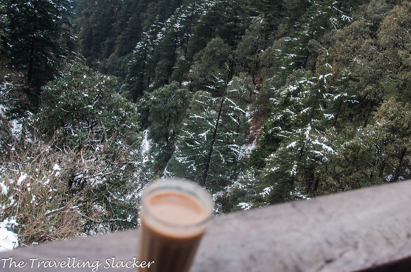 Mussoorie Winter (13)
