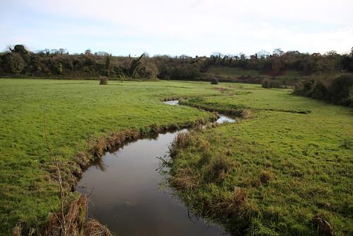 Stream near Burpham