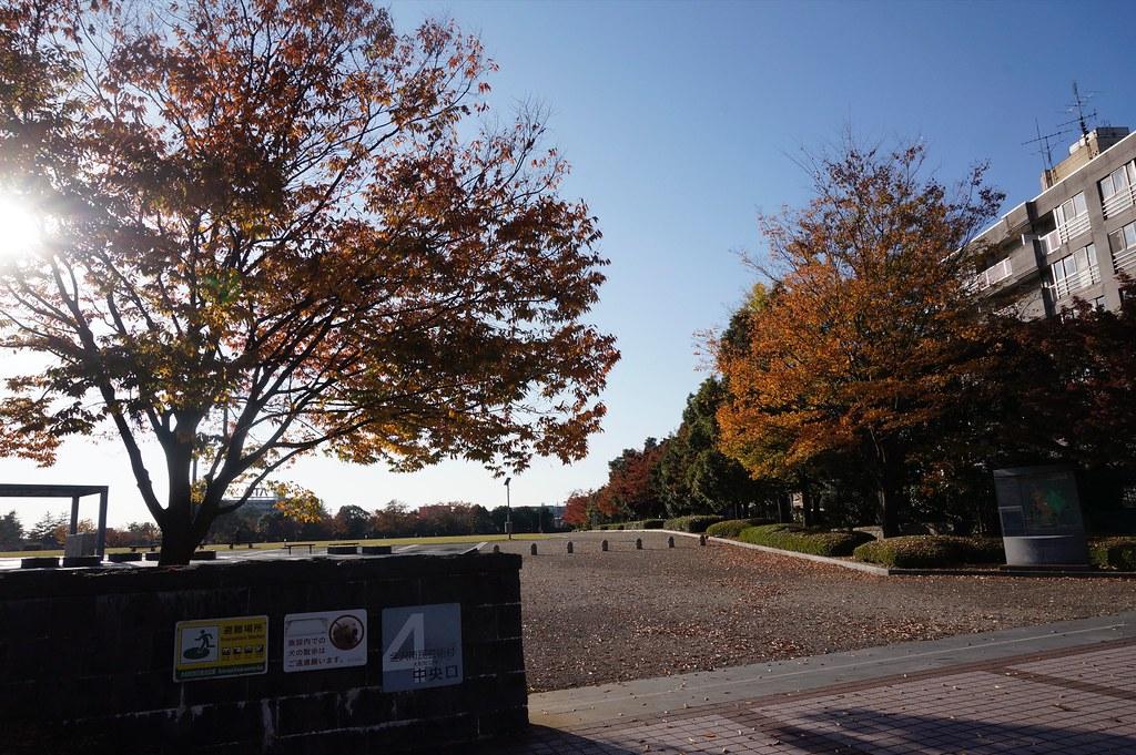 晩秋の金沢