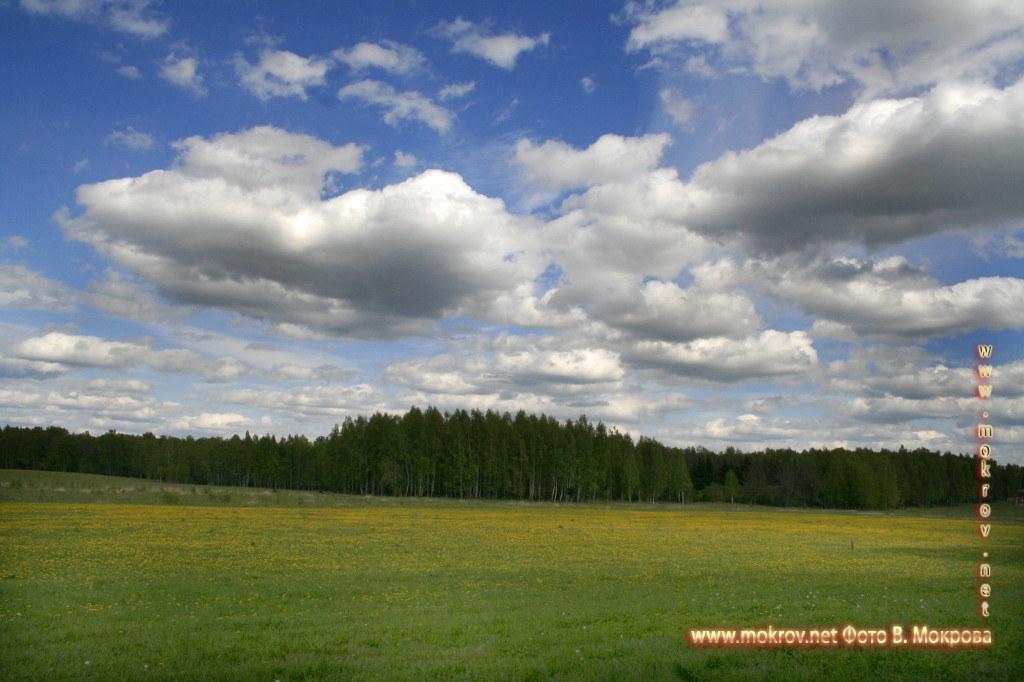 Музей-заповедник «Бородинское поле»  фото