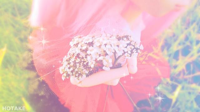 [Pullip Io] La boîte à souvenirs - Romantic flowers 38681802101_2da38562bb_z