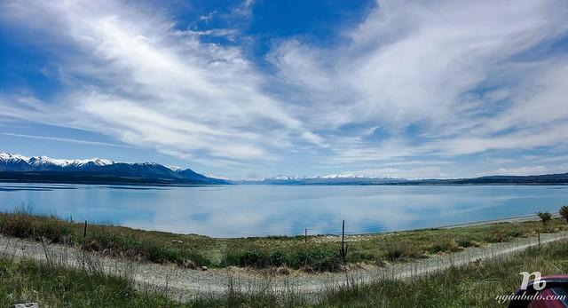 Road Trip vòng quanh New Zealand (4): Fairlie