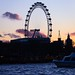The London eye, shot from the Thames