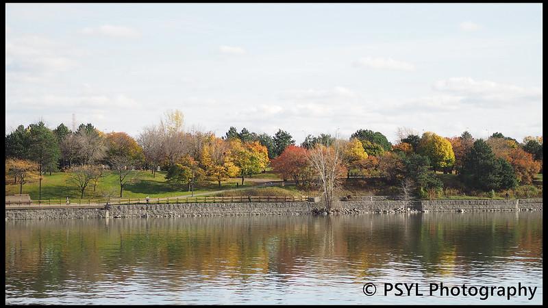 Autumn colours along St. Lawrence River