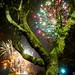 Norwich Big Boom Fireworks