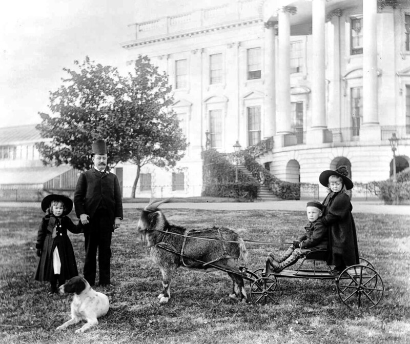 Major Russell Harrison and Harrison children outside the White House, 1890