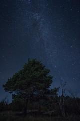 Nuit - Photo of Meyrueis