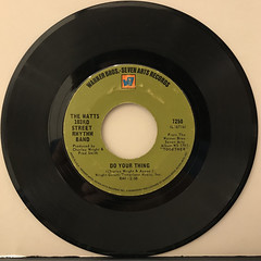 THE WATTS 103RD STREET RHYTHM BAND:DO YOUR THING(RECORD SIDE-A)