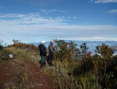 Birding in Perija Mountains