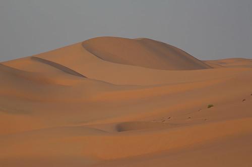 Dunes near my camp.