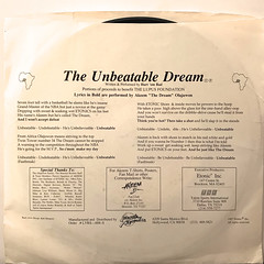 AKEEM THE DREAM:THE UNBEATABLE DREAM(JACKET B)