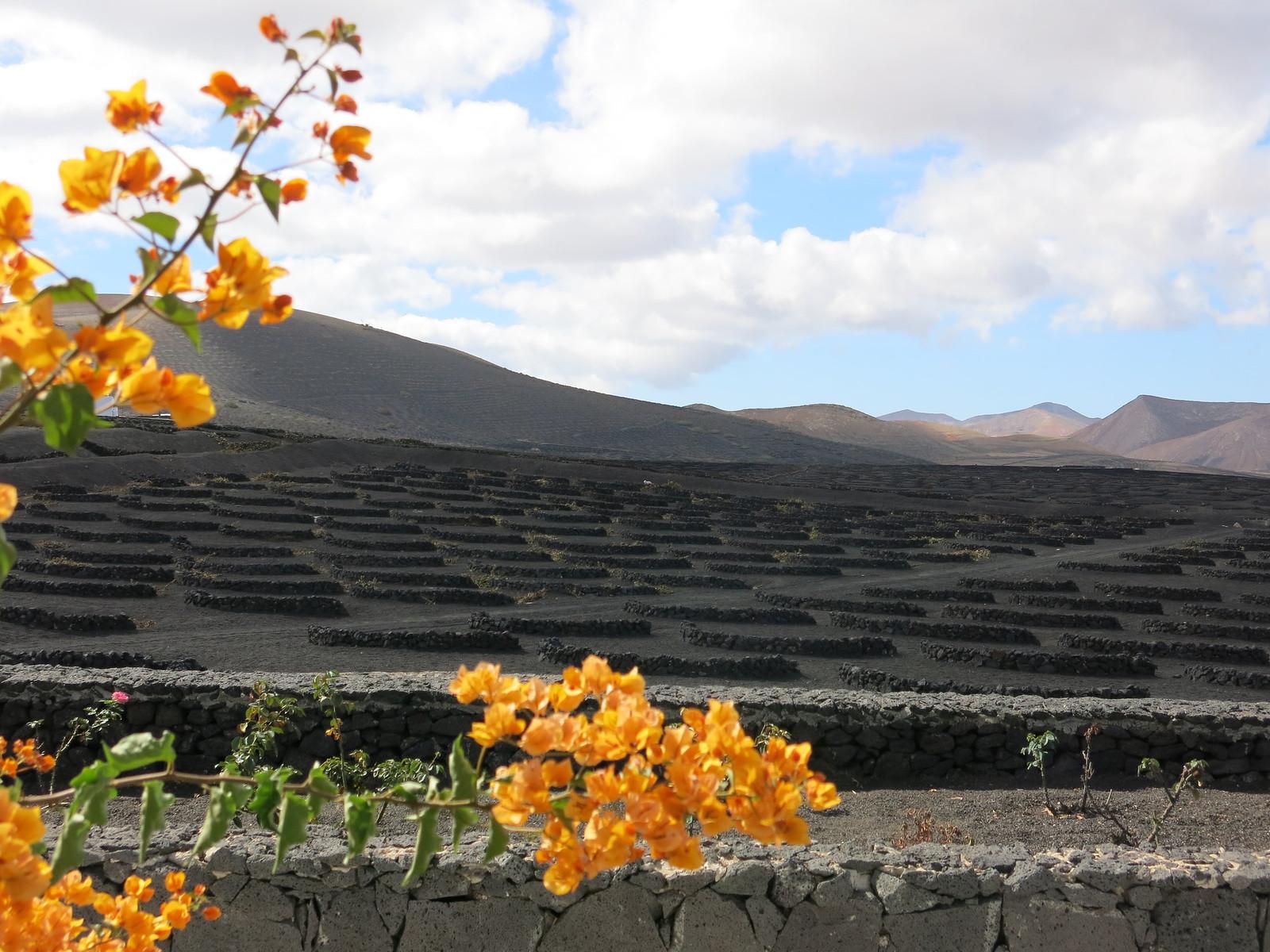 Lanzarote 079