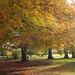 Stanton Park 12/11/17