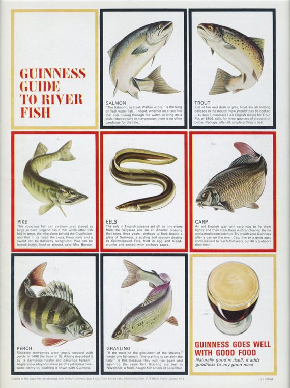 Guinness-1965-guide-to-river-fish