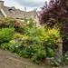 Cottage garden, Bisley, Gloucestershire