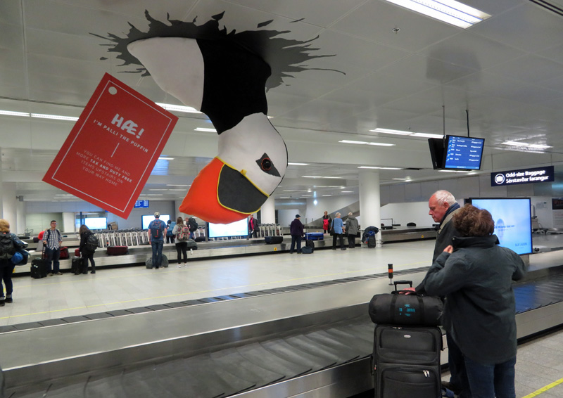 puffin-iceland-airport