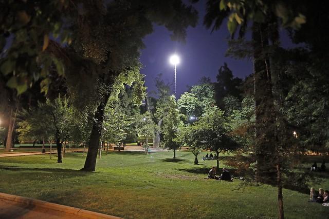 Parque Forestal Luminarias