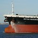 Ships on the Tees-British Resource-4