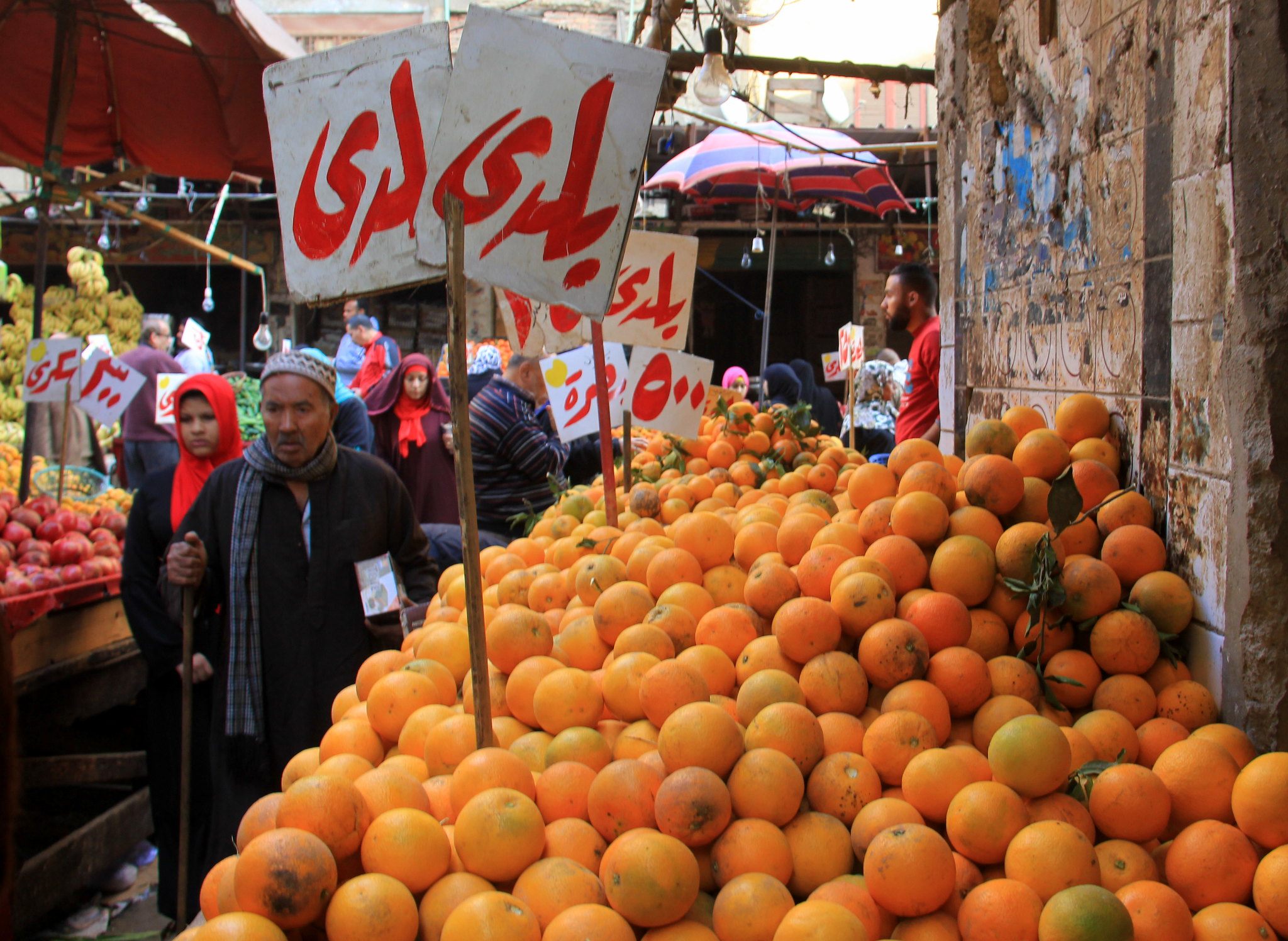 Mandarin is a winter fruit in Egypt