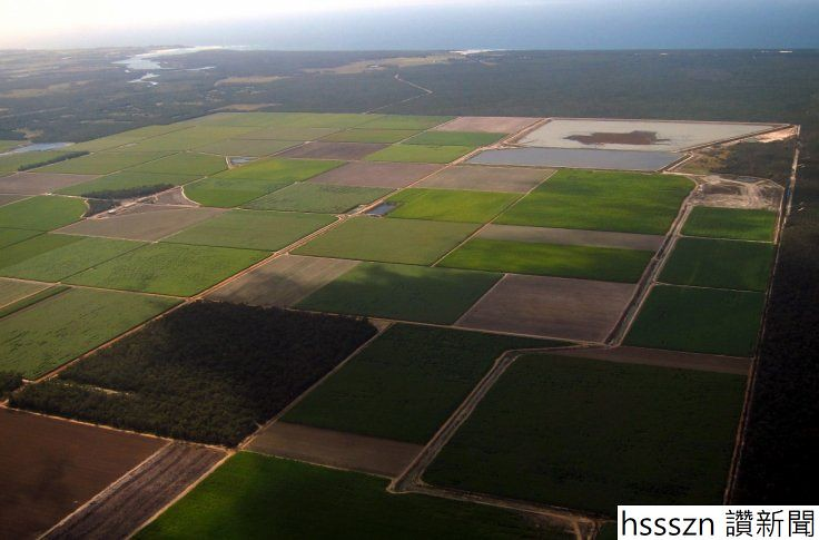 farmland-bundaberg_736_485
