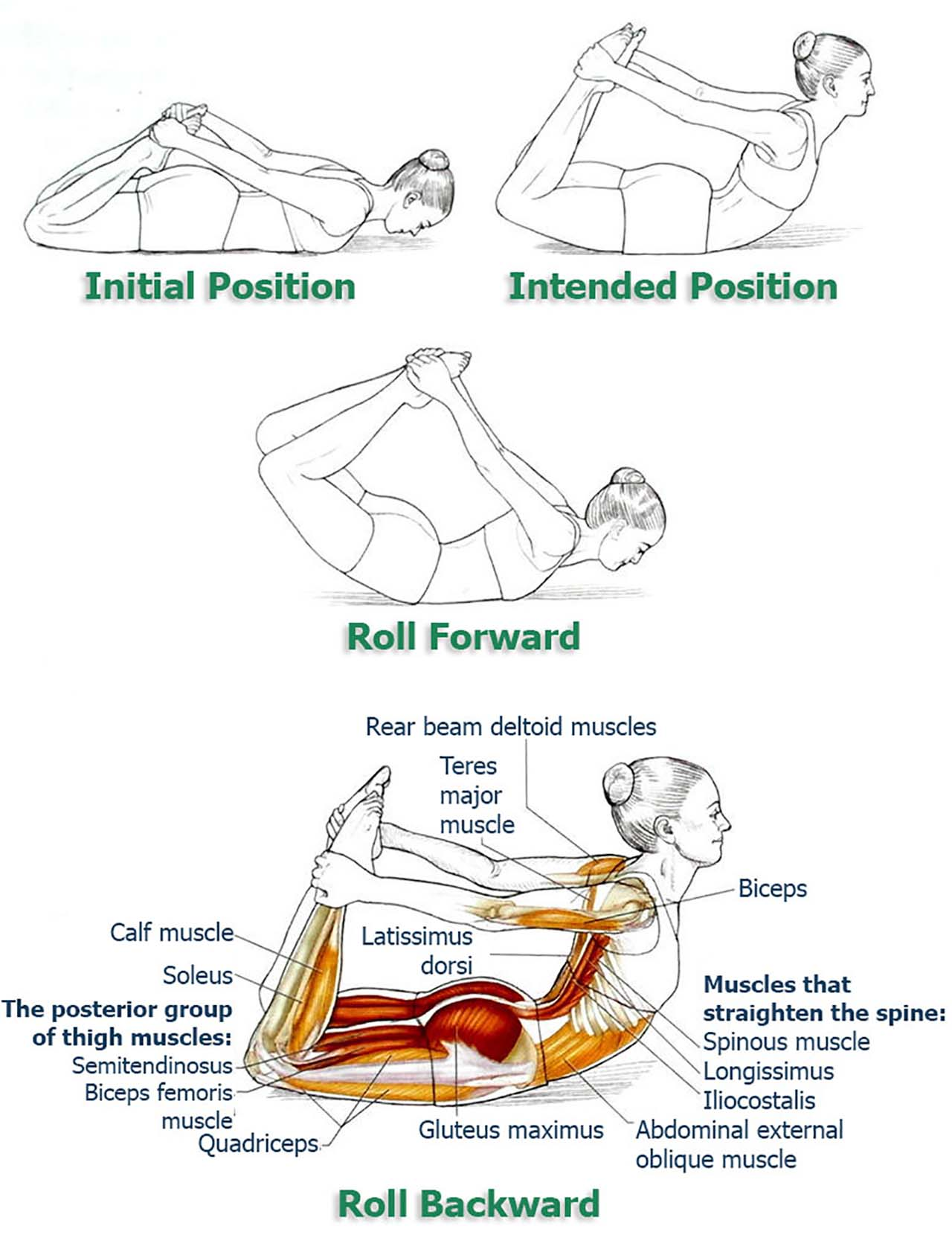 "8 Exercises To Improve Your Posture And Relieve Your Back & Spine - Stomach Rolls: This pose is probably the fastest way to fix your pelvic tilt because unlike any other pose, it directly affects glutes. Lie on your stomach and bend your legs towards your body. Hold your legs by the feet and don't let go. Pull your feet towards your back as much as you can. I'd like to use the term ""as much as you can"" because if you are new to this pose, you should probably use your full strength to do the right pose. Once you pull your feet and form a nice arch, roll forward just a bit to complete the pose."