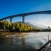 Ponte da Régua - IP3