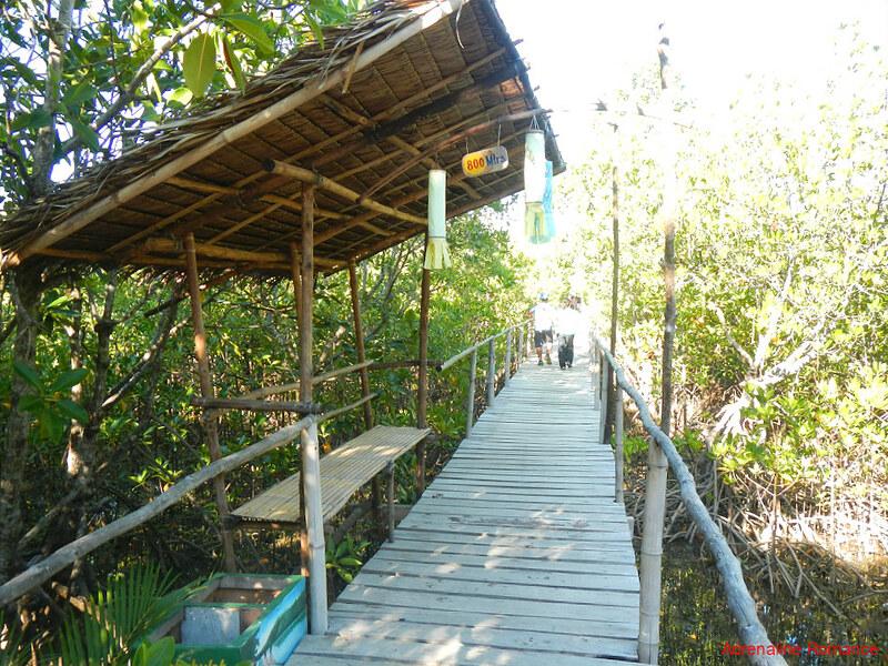 Wooden boardwalk resting area