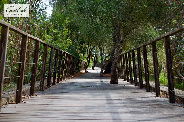 Parc natural de s'Albufera de Mallorca