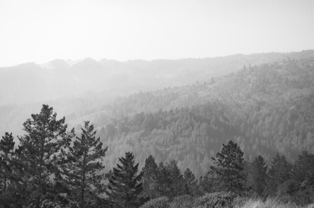 Panoramic highway Mount Tam