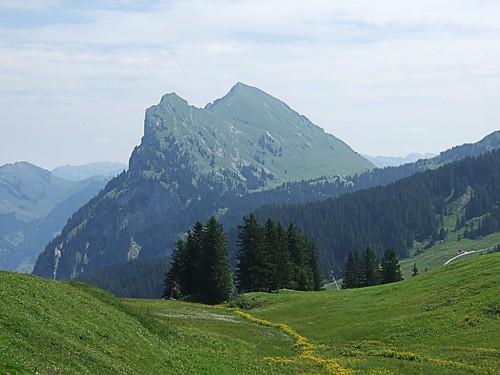 Kanisfluh von Alpe Wildgunten