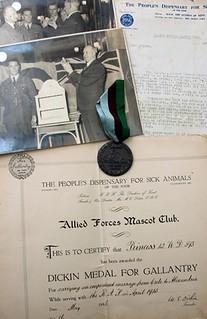 pigeon-dickin-medal