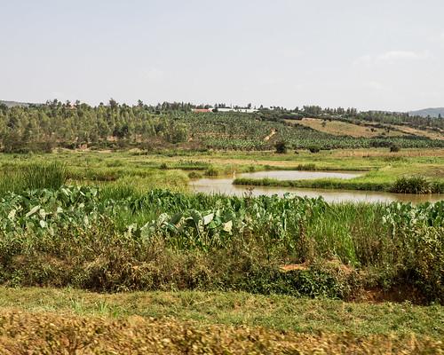 august ruanda paysage road landscape nature kabuga easternprovince rwanda rw